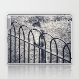 The Lonely Squirrel Laptop & iPad Skin