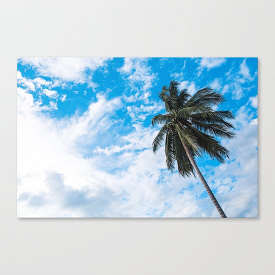 Palm Tree under Blue and White Canvas Print