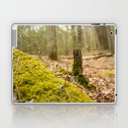 Mossy forest floor Laptop & iPad Skin