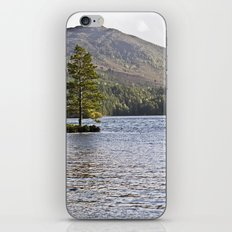 The Lonely Tree iPhone & iPod Skin