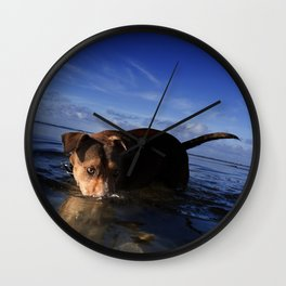 Paws Playing Jaws. Wall Clock
