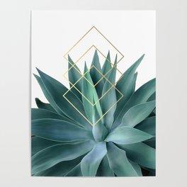 Agave geometrics Poster