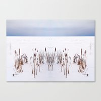 plain Canvas Prints featuring Winter Plain by Reimerpics