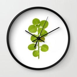 oregano Wall Clock