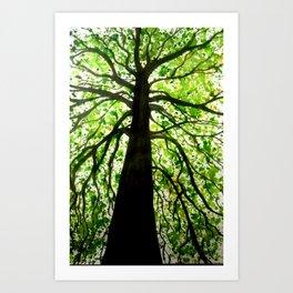 Tree in Ink Art Print