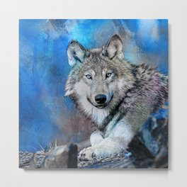 Blue Wolf Wildlife Mixed Media Art Metal Print