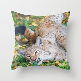 Playful Lynx Throw Pillow