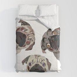Triple Pugs Comforters