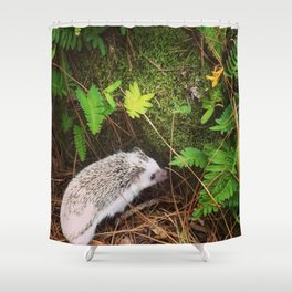 Juni Hedgehog In the Woods Shower Curtain