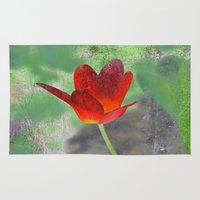 tulip Area & Throw Rugs featuring Tulip by LoRo  Art & Pictures