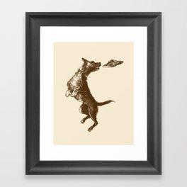 Flying Disc Framed Art Print