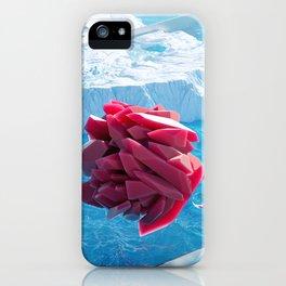 Arctic Gems iPhone Case