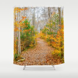Never Ending Path Shower Curtain