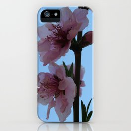 Pastel Pink of Peach Tree Blossom iPhone Case