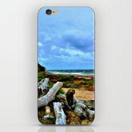 Stormy Beach iPhone Skin