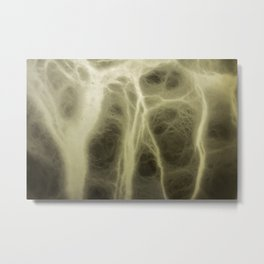 Forms of light and shadow that simulates the bone tissue. Abstract background to be used by designer Metal Print