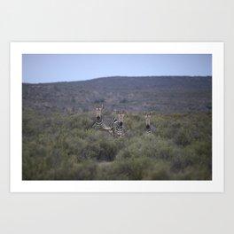 Cederberg Mountains I Art Print