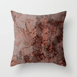 This Time I will Succed Throw Pillow