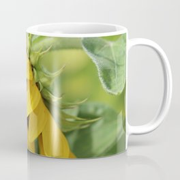 Sunflower Morning Coffee Mug