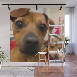 MAX and ROCKY (shelter pups) Wall Mural