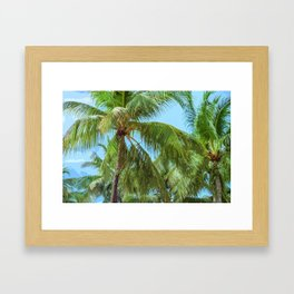 Tropical Palm Trees Framed Art Print