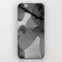 Majestic Heights iPhone Skin