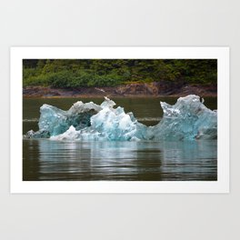 Water and Ice Reflections Art Print