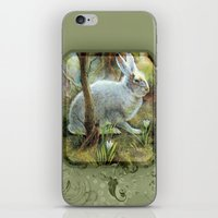 hare iPhone & iPod Skins featuring Hare by Natalie Berman