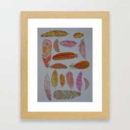 Warm Feathers Framed Art Print