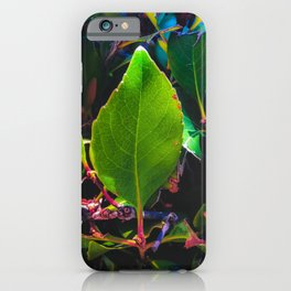 closeup green leaves with orange and green leaves background iPhone Case