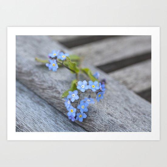 blue flower Fortget Me Not Art Print