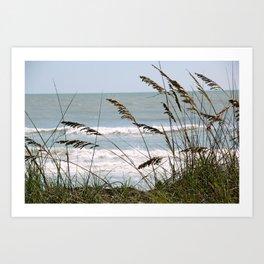 """"""" Sanibel Breeze""""  Art Print"""
