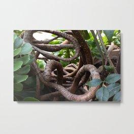 Tangle trunks Metal Print