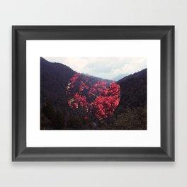Happy Lost Framed Art Print