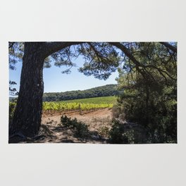 Vineyard of red grapes in a wood on the island of Porquerolles Rug