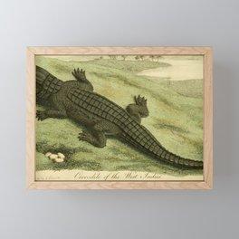 Vintage Print - Bullock's London Museum & Pantherion (1812) - West Indies Crocodile Framed Mini Art Print