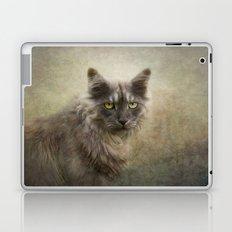 I am a cat  Laptop & iPad Skin