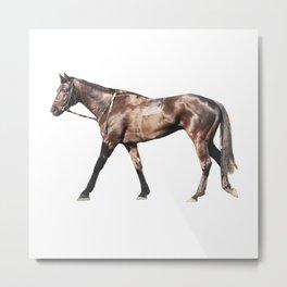 Thoroughbred Racehorse Metal Print