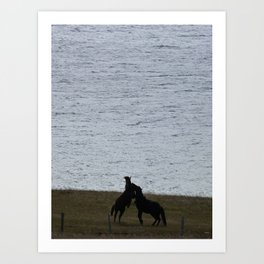 Majestic Horses Art Print