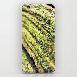 Fallen Oak iPhone Skin