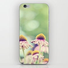 Rusty Coneflowers iPhone & iPod Skin
