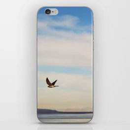 FREE SPIRITS HAVE TO SOAR ♡ iPhone Skin