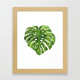 Jungle Leaf Monstera Deliciosa Framed Art Print