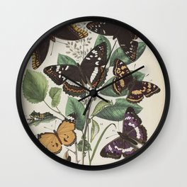 BUTTERFLIES LEPIDOPTERA Plain Tiger - Purple Emperor - Two-tailed Pasha Wall Clock