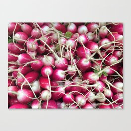 RADishes... Canvas Print