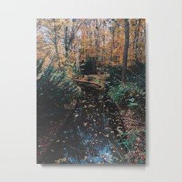 Autumn Crisp Metal Print