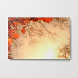 Oak Leaves Sunset Metal Print