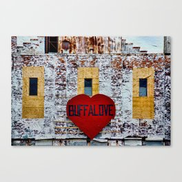 Buffalo Love Canvas Print
