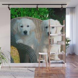 White Golden Retriever Dogs Sitting in Fiber Chair Wall Mural