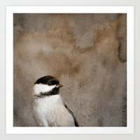 Chickadee Portrait Art Print